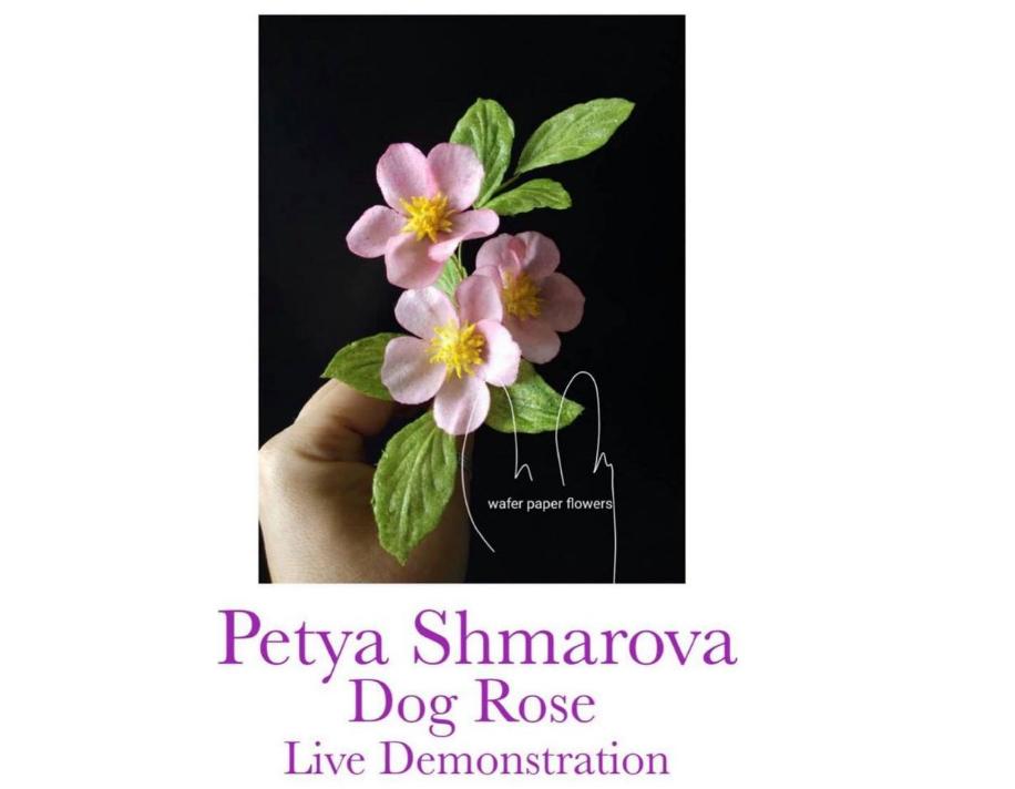 Petya Shmarova - Dog Rose - Online