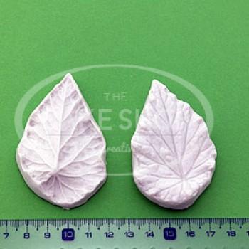 Blooms Begonia Leaf M