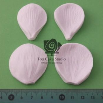 Blooms Anemone Petal Set
