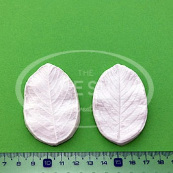 Blooms Dogrose Leaf Veiner