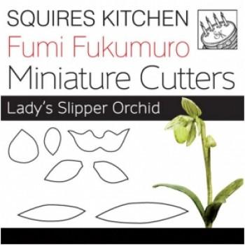 Fumi Fukumuro Miniature Lady's Slipper Orchid