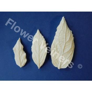 Flower Veiners Campanula Leaf set S-M-L