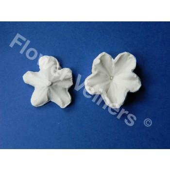 Flower Veiners Primula Primrose Quick mould S