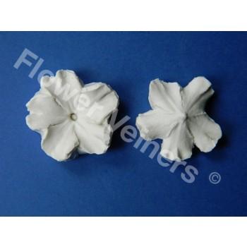 Flower Veiners Primula Primrose Quick mould M