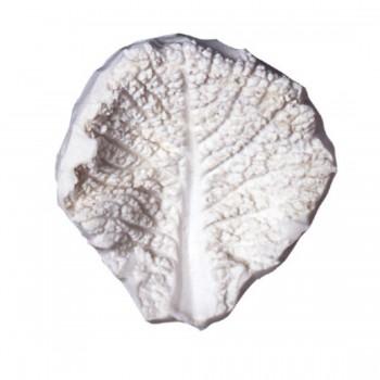SK Great Impressions Leaf Veiner Cabbage - Savoy