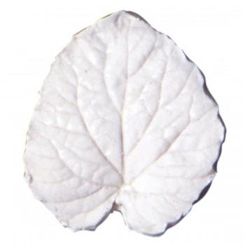 SK Great Impressions Leaf Veiner Campanula (Bellflower)