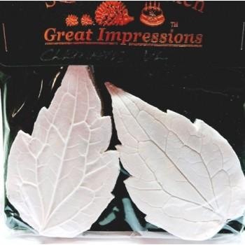 SK Great Impressions Leaf Veiner Clematis VL