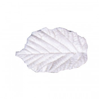 SK Great Impressions Leaf Veiner Hazel (Corylus Avellana) Set/2