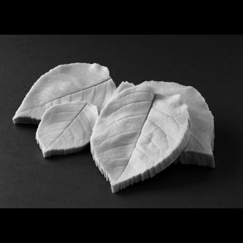 Rose leaves Botanically Correct Veiner set of four