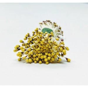 Blooms Stamens Duo Brown/Yellow tip