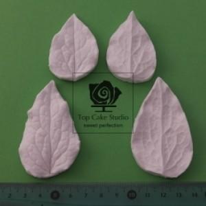 Blooms Clematis Leaf set - Top Cake Studio