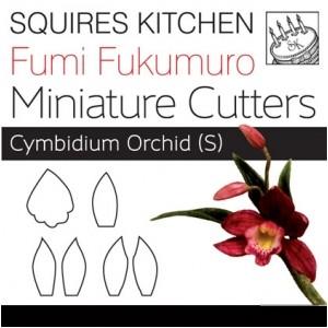 Fumi Fukumuro Miniature Cymbidium Orchid S