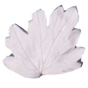 SK Great Impressions Leaf Veiner Aquilegia (Columbine) 4.5cm S