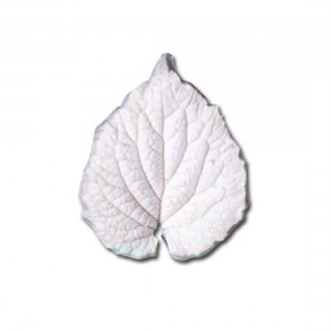SK Great Impressions Silicone Veiner Lamium L (Dead Nettle)