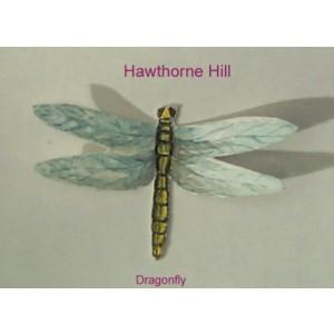 Hawthorne Hill Dragonfly
