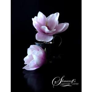 Gastworkshop Petya Shmarova - Magnolia & Cherry Blossom