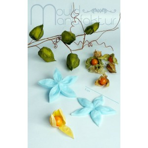 Mould Manufaktur Lampionblume Blüte