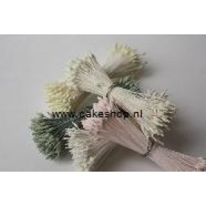Stamens Pointed small white