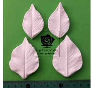 Blooms Dahlia Leaf set