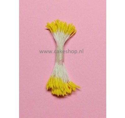 Blooms Stamens Yellow - Long