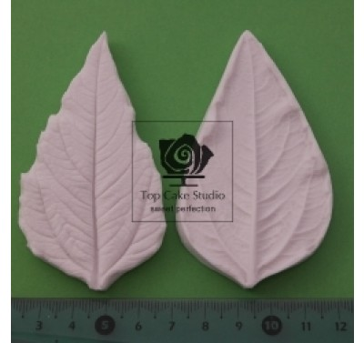 Blooms Sunflower Leaf B - long