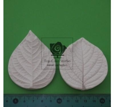 Blooms Hydrangea Leaf Veiner M