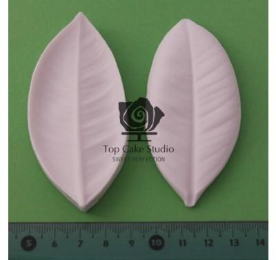 Blooms Gardenia Leaf L