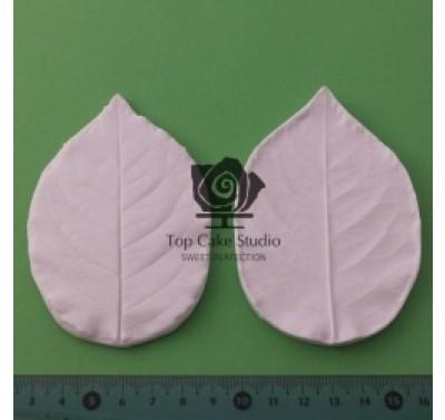 Blooms Rose Leaf L