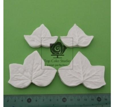 Blooms Ivy Leaf Set