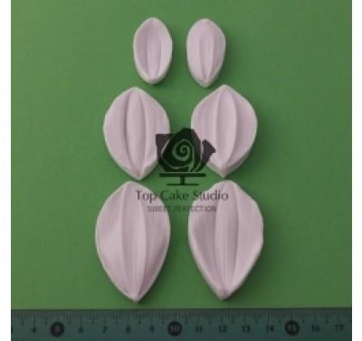 Blooms Dahlia Petal Set - Top Cake Studio