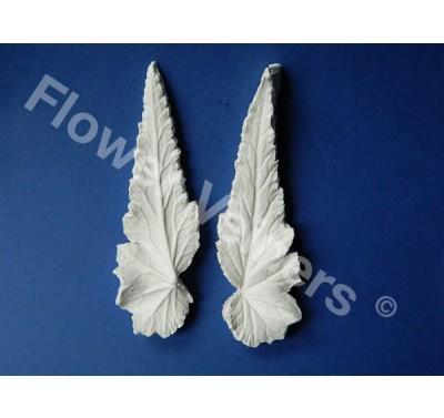 Flower Veiners Begonia Leaf M