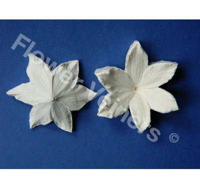 Flower Veiners Clematis Quick flower mould