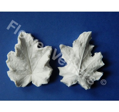 Flower Veiners Heuchera Leaf S