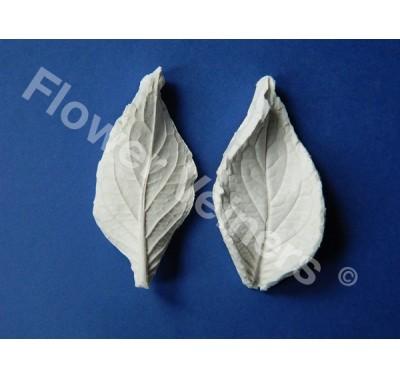 Flower Veiners Hydrangea Leaf S