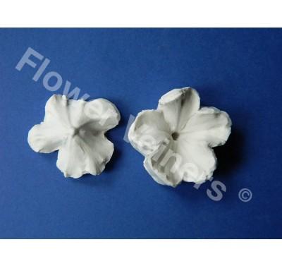 Flower Veiners Primula Primrose Quick mould L