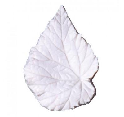SK Great Impressions Leaf Veiner Begonia Rex L