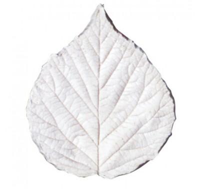 SK Great Impressions Leaf Veiner Blackberry set/3