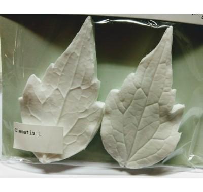 SK Great Impressions Leaf Veiner Clematis L