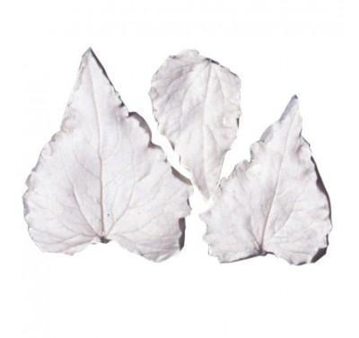 SK Great Impressions Leaf Veiner Honesty (Lune) Set of 3