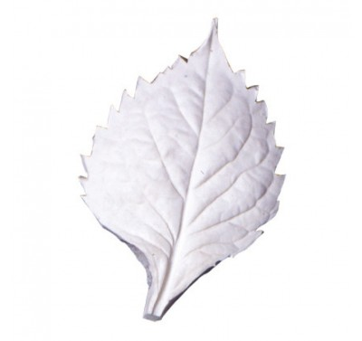 SK Great Impressions Leaf Veiner Hydrangea 9 cm VL