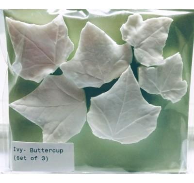SK Great Impressions Leaf Veiner Ivy - Buttercup Set of 3