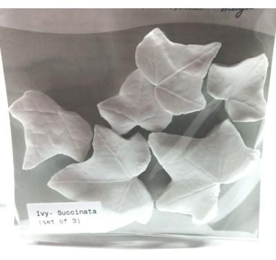 SK Great Impressions Leaf Veiner Ivy Succinata set/3