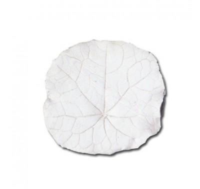 SK Great Impressions Leaf Veiner Nasturtium L