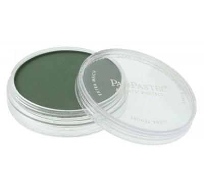 PanPastel Permanent Green extra Dark 640.1 PBk7
