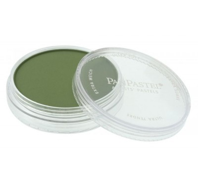 PanPastel Chrome Oxide Green Shade 660.3 PG17