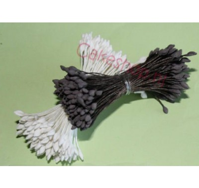 Stamens Hammerhead White Large