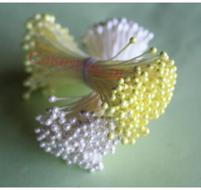 Stamens Medium Pearl Yellow