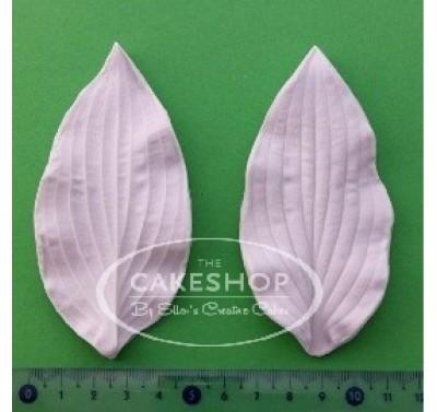 Blooms Hosta Leaf