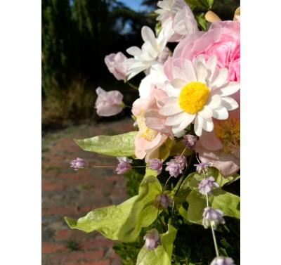 Cursus voor beginners - Bloemen van Ouwel