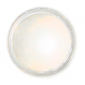 Fractal Colors - SuPearl Shine® Dust Food Coloring - Shell Nacre Gold